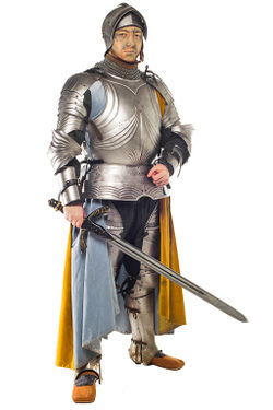 A rich cloak is often worn over plate, especially in House colours. Armour by Norton ArmouriesSurcote by The Midgard Seamstress